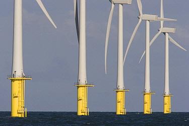 Windfarm at sea, Liverpool, England  -  Luc Hoogenstein/ Buiten-beeld