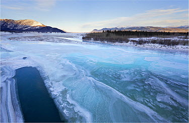 Icy river through the forested mountains of the Yukon, White River, Canada  -  Peter den Hartog/ Buiten-beeld