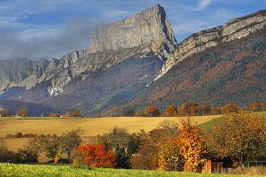 Bocage landscape, Vercors Regional Natural Park, France  -  Wouter Pattyn/ Buiten-beeld