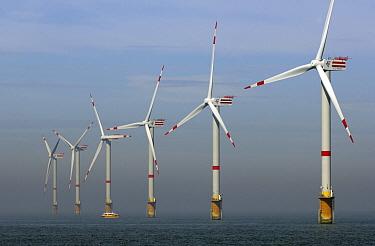 Wind turbines, North Sea, Belgium  -  Karl Van Ginderdeuren/ Buiten-be