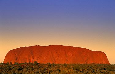 Uluru (Ayer's Rock), Uluru-Kata Tjuta National Park, Red Center, Northern Territory, Australia  -  Wil Meinderts/ Buiten-beeld