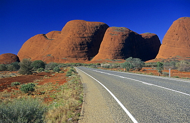Rock formations of Kata Tjuta, Mount Olga, Australia  -  Wil Meinderts/ Buiten-beeld