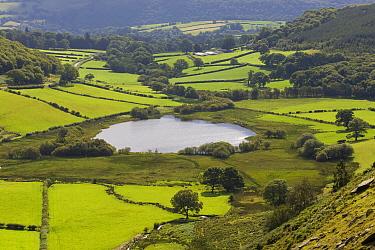 Bocage landscape, Brecon Beacons National Park, England  -  Wouter Pattyn/ Buiten-beeld