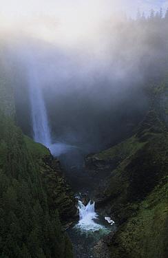Helmcken Falls, Wells Gray Provincial Park, Canada  -  Wil Meinderts/ Buiten-beeld