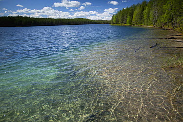 Lake Hossa, Kuhmo, Finland  -  Johan van der Wielen/ Buiten-bee