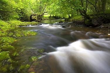 Brecon Beacons waterfall, Wales, England  -  Wouter Pattyn/ Buiten-beeld