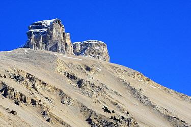 Col du Rousset, Hautes-Alpes, Vercors National Park, France  -  Wouter Pattyn/ Buiten-beeld