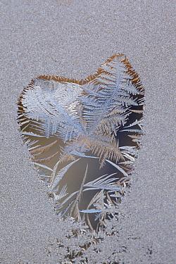 Frost forming heart shape on window  -  Luc Hoogenstein/ Buiten-beeld