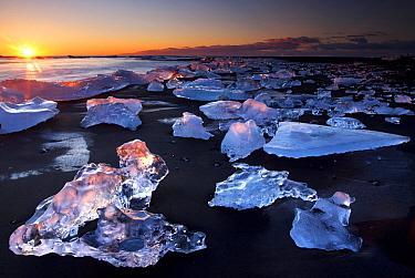 Chunks of ice on coastline near Jokulsarlon at sunset, Iceland  -  Wouter Pattyn/ Buiten-beeld