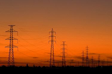 Transmission towers at sunset, Riemst, Belgium  -  Paul van Hoof/ Buiten-beeld