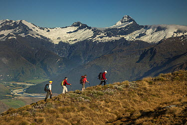 Trekkers on Buchanan Peaks with Mount Aspiring behind, Lake Wanaka, New Zealand  -  Colin Monteath/ Hedgehog House