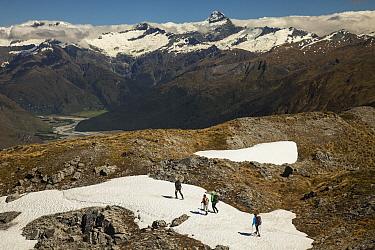 Trekkers on Buchanan Peaks looking towards Mount Aspiring, Lake Wanaka, New Zealand  -  Colin Monteath/ Hedgehog House