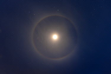 Ice crystals reflecting light in ring around moon, Ostional Beach, Costa Rica  -  Ingo Arndt