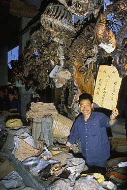 Shop owner in traditional chinese medicine market, Sichuan, China  -  Roland Seitre