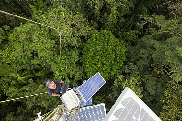 Scientist measuring gas emissions on tower above the tropical rainforest canopy, Barro Colorado Island, Panama  -  Cyril Ruoso