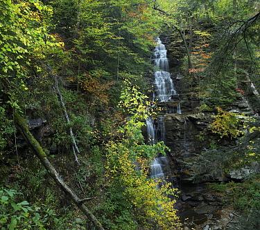 Ganoga Falls, Ricketts Glen State Park, Pennsylvania  -  Tim Fitzharris