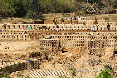 People manufacturing bricks, Fianarantsoa Province, Madagascar  -  Konrad Wothe