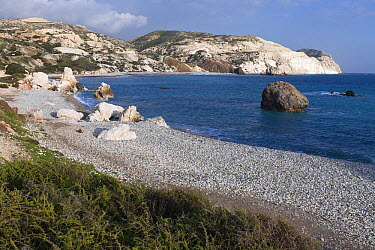 Chalk cliff coastline and beach, Aphrodite's Rock, Cyprus  -  Duncan Usher