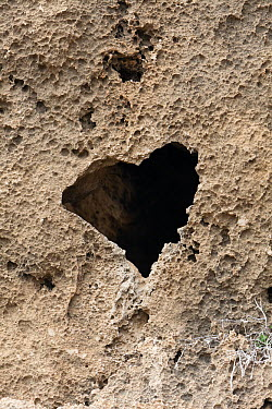 Heart shaped hole in volcanic rock, Cyprus  -  Duncan Usher