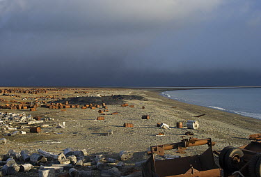 Coastline with abandoned rusting barrels, Wrangel Island, Russia  -  Sergey Gorshkov