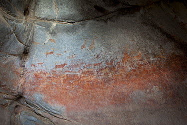 African wildlife and human figures depicted in San bushman rock paintings, estimated at around 2000 years old, Nswatugi Cave, Matobo National Park, Zimbabwe  -  Michael Durham
