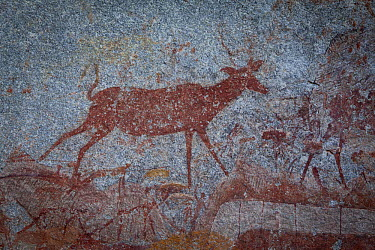 Greater Kudu (Tragelaphus strepsiceros) depicted in San Bushman rock paintings, estimated at around 2000 years old, Nswatugi Cave, Matobo National Park, Zimbabwe  -  Michael Durham