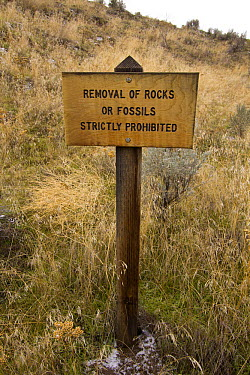 Sign forbidding removal of rocks or fossils, Blue Basin, John Day Fossil Beds National Monument, Oregon  -  Michael Durham