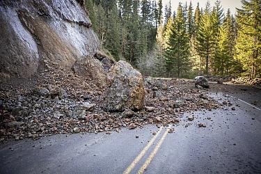 Landslide blocking forest road, Mount Hood National Forest, Oregon  -  Michael Durham
