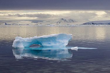 Iceberg, Gonzalez Videla Antarctic Base, Paradise Bay, Antarctic Peninsula, Antarctica  -  Matthias Breiter