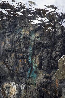 Copper deposit in rocks, Almirante Brown, Paradise Bay, Antarctic Peninsula, Antarctica  -  Matthias Breiter
