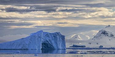 Iceberg and coast, Gerlache Strait, Anvers Island, Antarctic Peninsula, Antarctica  -  Matthias Breiter