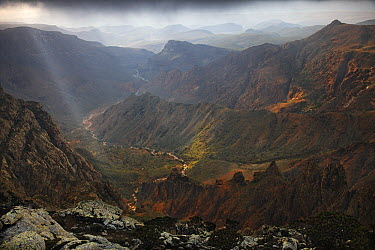 Seasonal creek meandering among mountain ridges, Hajhir Mountains, Socotra, Yemen  -  Mark Moffett