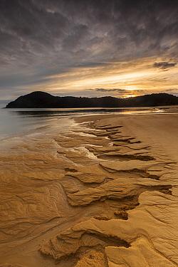 Erosion patterns on beach at sunrise, Anchorage Bay, Abel Tasman National Park, New Zealand  -  Colin Monteath/ Hedgehog House
