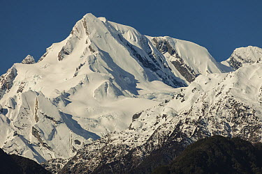 Western peak of Mount Elie de Beaumont, seen from Franz Josef Glacier, South Island, New Zealand  -  Colin Monteath/ Hedgehog House