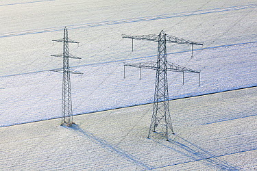 Power lines in snow, Netherlands  -  Sjon Heijenga/ Buiten-beeld