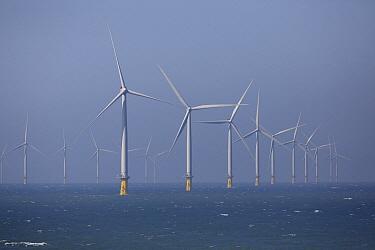 Offshore windmills, England  -  Chris van Rijswijk/ Buiten-beeld