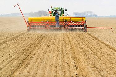 Onion (Allium sp) planting, Netherlands  -  Nico van Kappel/ Buiten-beeld