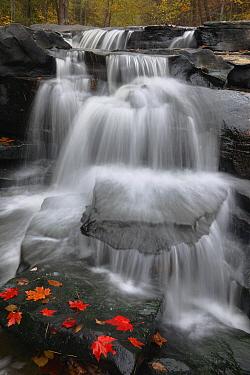 Waterfall on New River, West Virginia  -  Hiroya Minakuchi