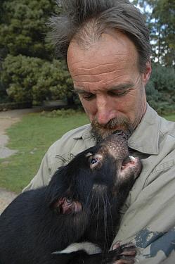 Tasmanian Devil (Sarcophilus harrisii) captive breeding expert, Androo Kelly, holding individual, Trowunna Wildlife Park, Tasmania, Australia  -  D. Parer & E. Parer-Cook