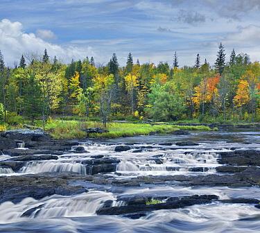 Saint Louis River, Jay Cooke State Park, Minnesota  -  Tim Fitzharris