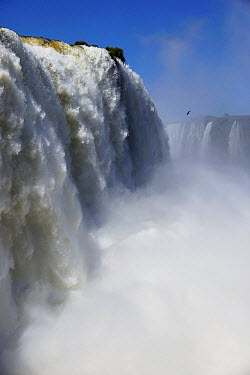 Iguacu Falls, Iguacu National Park, Brazil  -  Hiroya Minakuchi