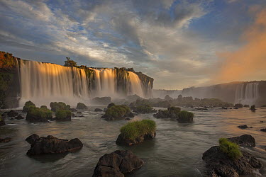 Cascades of the Iguacu Falls, the world's largest waterfalls, Iguacu National Park, Argentina  -  Ingo Arndt