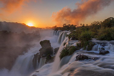 Sunrise at Iguacu Falls, largest waterfalls in the world, Iguacu National Park, Brazil  -  Ingo Arndt