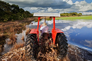 Rancher driving his tractor on a flooded road, Pantanal, Brazil  -  Luciano Candisani