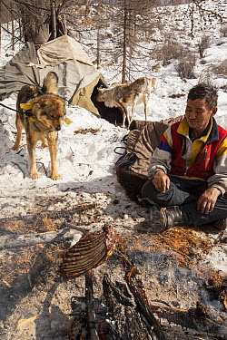 Tsataan man cooking ribs over fire while dog watches and Reindeer investigates teepee, Hunkher Mountains, Mongolia  -  Colin Monteath/ Hedgehog House