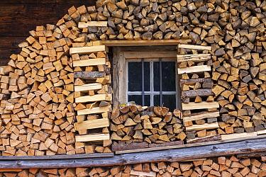 Firewood stacked around log cabin, Zillertal, Alps, Austria  -  Sjon Heijenga/ Buiten-beeld