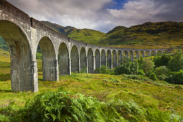 Glenfinnian Viaduct, now used as a railway bridge, spanning over river and valley, Lochaber, Highland, Scotland  -  Johan van der Wielen/ Buiten-bee