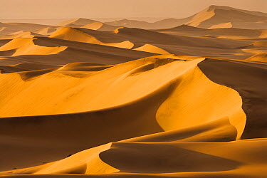 Sand dunes at sunrise, Namib Desert, Swakopmund, Namibia  -  Chris Stenger/ Buiten-beeld