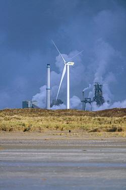 Wind turbine and factory, Ijmuiden, Netherlands  -  Nico van Kappel/ Buiten-beeld