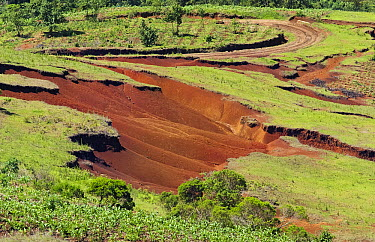 Eroded hillsides due to deforestation in mountainous area, Ixconlaj, Guatemala  -  Albert Lleal